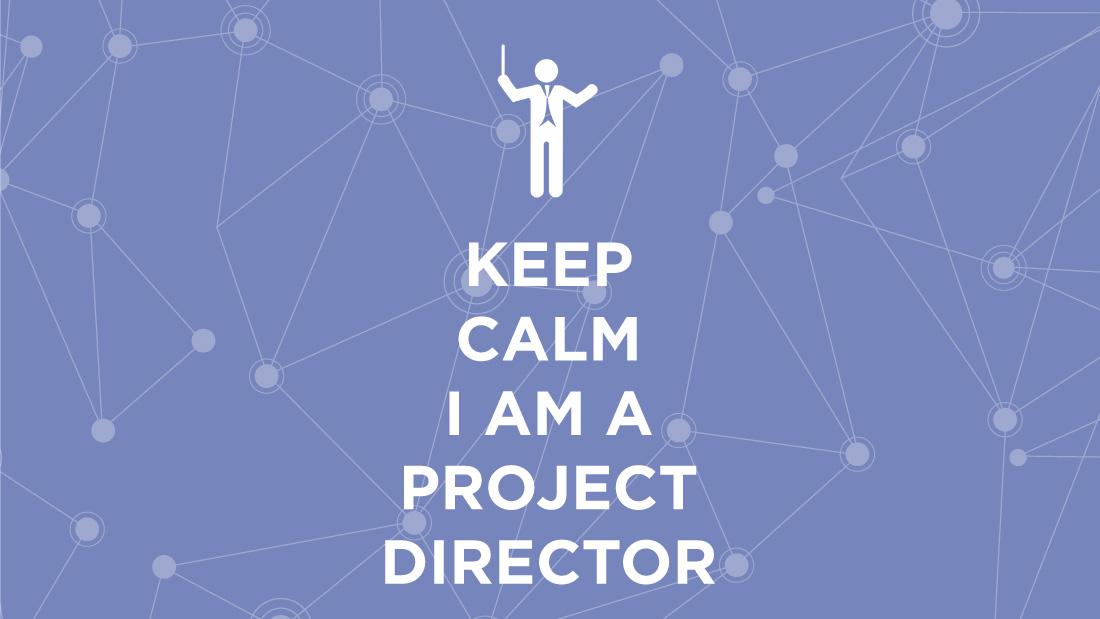 Directeur de Projet